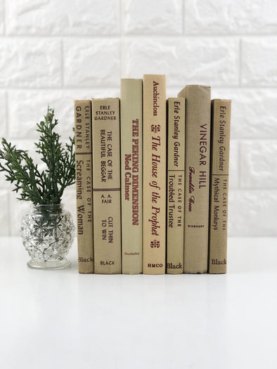 Decorative Books / Books for Shelf Decor / Book Decor