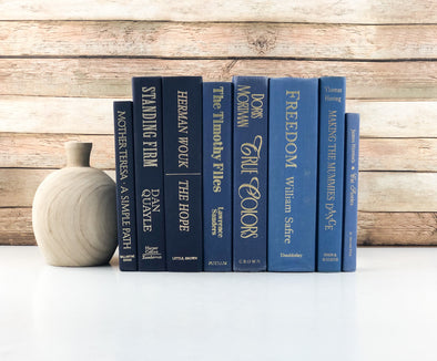 Blue Stack of Books