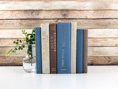 Blue Books for Decoration