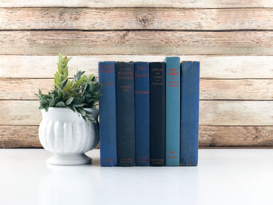 Blue and Orange Decorative Books