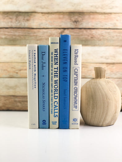 Blue and White Shelf Decor
