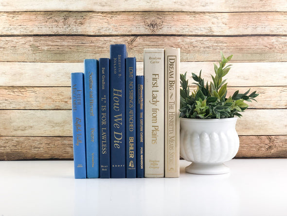 Blue and Cream Book Bundle