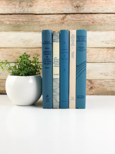 Blue and Cream Shelf Decor