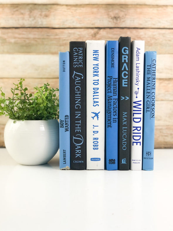 Blue, White and Black Decorative Book Set