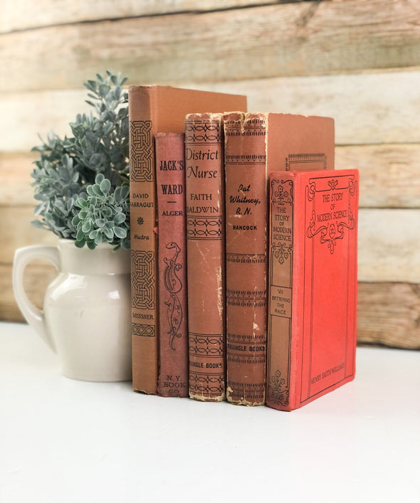Decorative Book Set