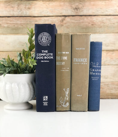 Blue and Tan Book Bundles