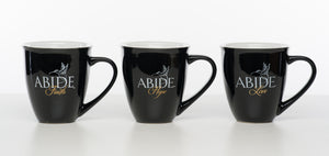 Abide Scripture Mugs - Love