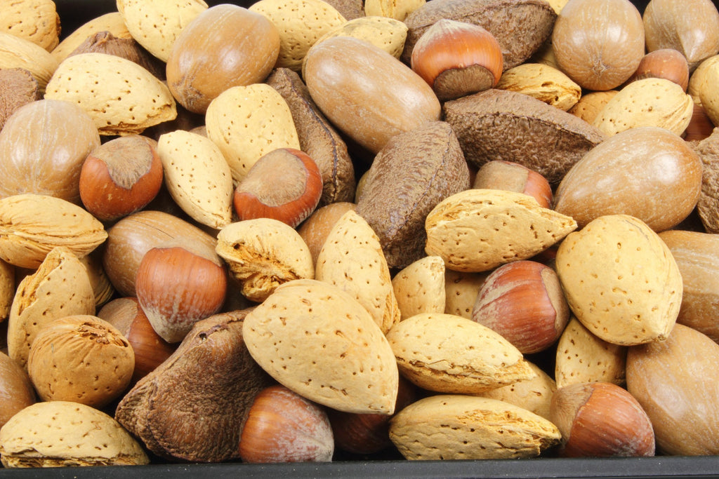 Assorted nuts for snacks