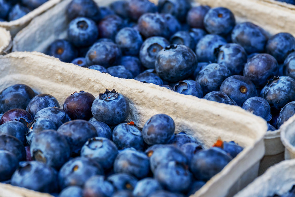 blueberries_in_trays