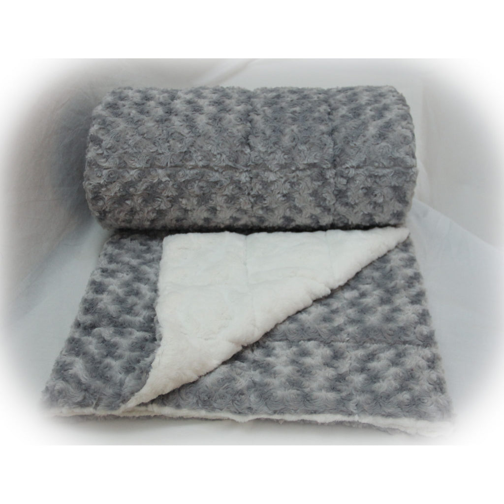 Minky Weighted Blanket 2-6 LBS X-Small Youth Silver