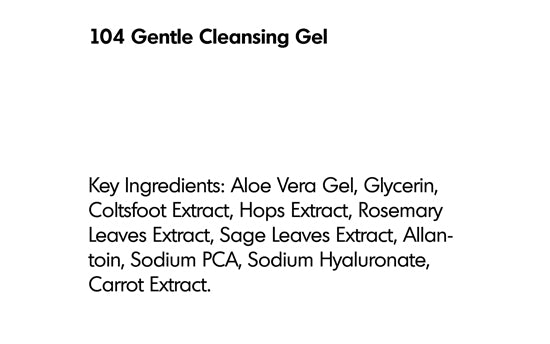 GENTLE CLEANSING GEL (104) - rayaspa