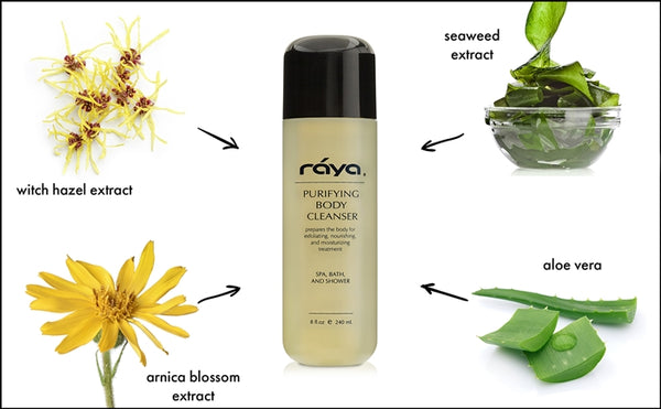 PURIFYING BODY CLEANSER (S-101) - rayaspa