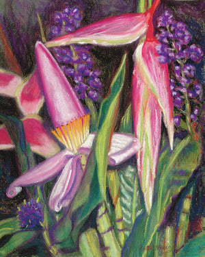 Tropical Hawaii flower garden, Bloomin' Banana - Archival Print