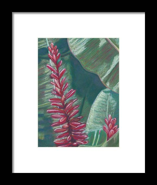 Red Ginger - Framed Print