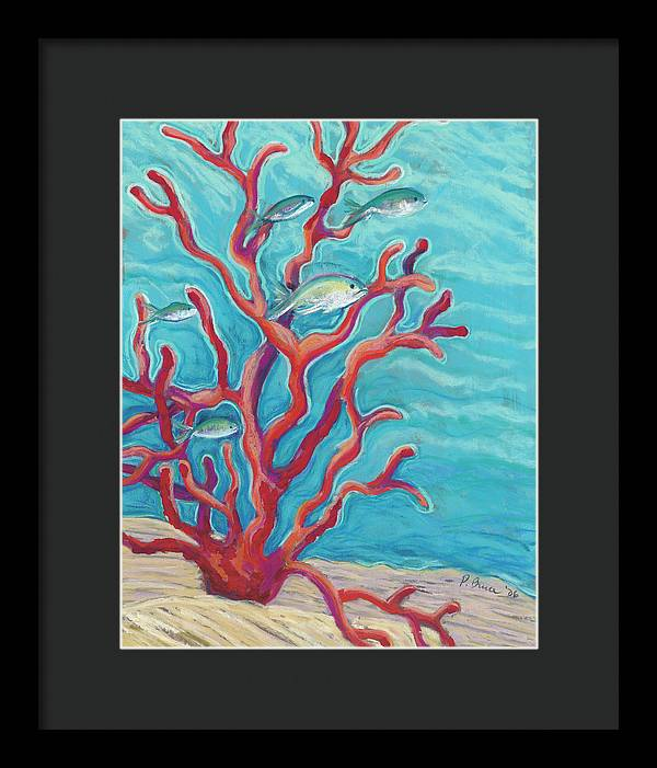 Coral Assets - Tropical Fish & Coral - Framed Print