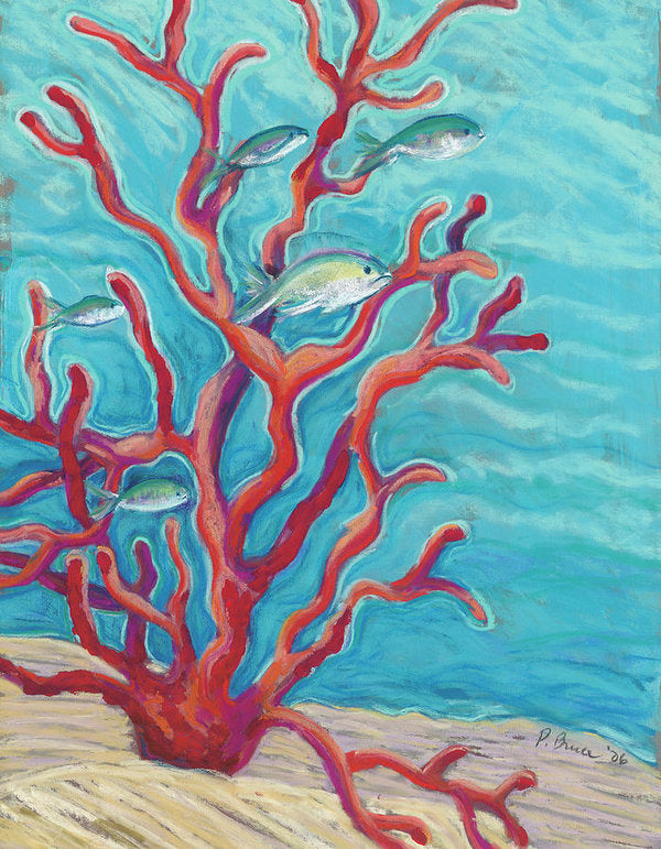 Hawaii Tropical Fish & Coral - Archival Print