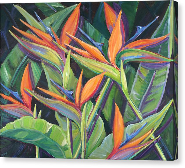 Dancing Birds - Tropical Flowers, Birds of Paradise - Canvas Print
