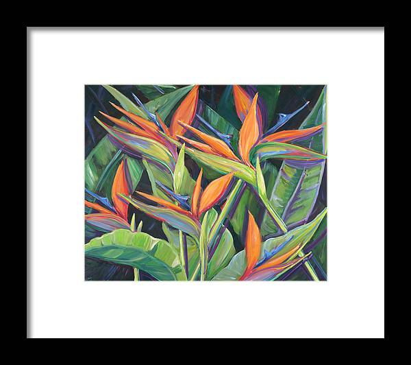 Dancing Birds - Tropical Flowers, Birds of Paradise - Framed Print