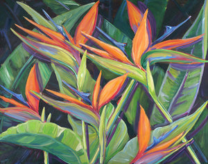 Dancing Birds -  Tropical Flowers, Birds of Paradise - Archival Print