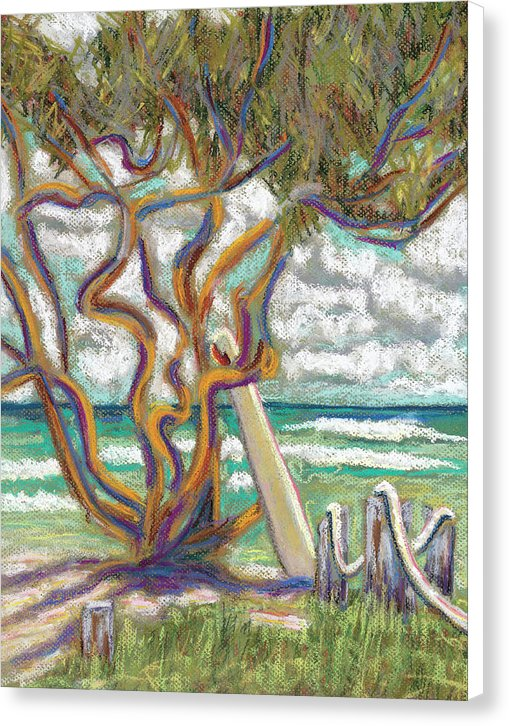 Malaekahana Tree Hawaii Beach - Canvas Print