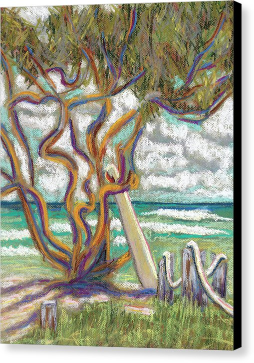 Malaekahana Tree: Canvas Print