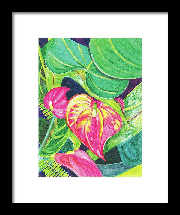 Pink Anthurium - Framed Print