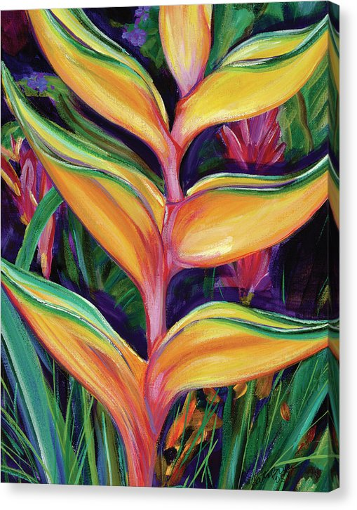 Heliconia - Canvas Print