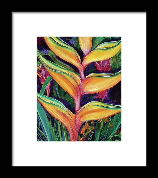 Heliconia - Framed Print