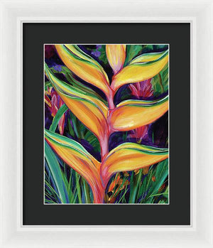 Heliconia Tropical Hawaii Flower - Framed Print