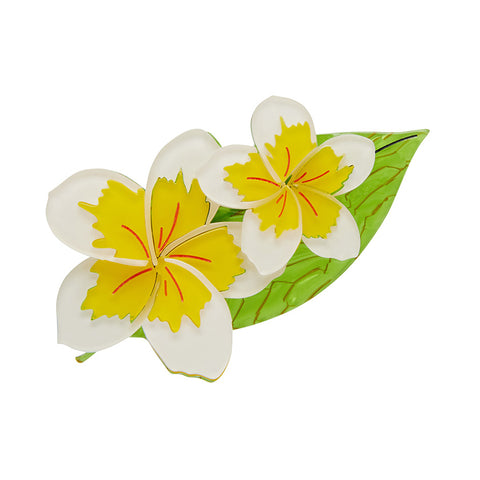 LEI It On Me Brooch