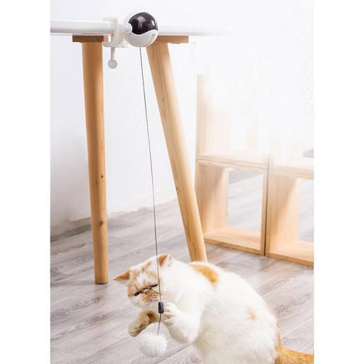 Electric Teaser Ball Cat Toy - Household Hacks