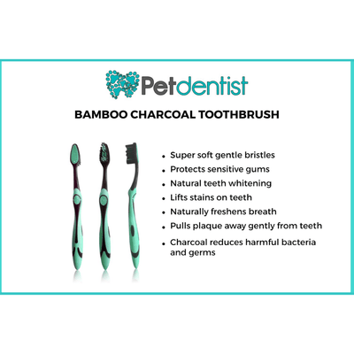 Extra Large Breed Pet Bamboo Charcoal Dog Toothbrush - Pet Dentist