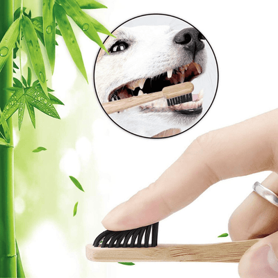 Eco-Friendly Large Breeds Bamboo Charcoal Toothbrush with Natural Bamboo Storage Case - Petdentist