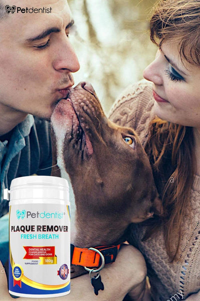 Fresh Breath Natural Plaque Remover Powder for Dogs and Cats Dental Care -180g - Petdentist