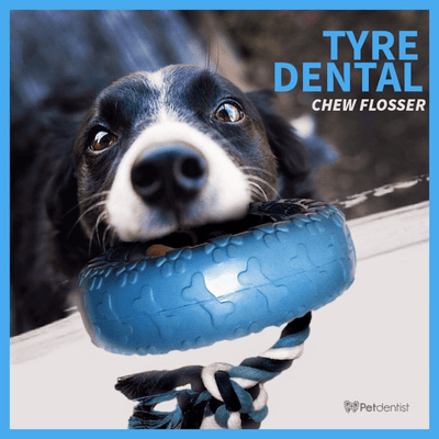 Petdentist® Flosser Rope Rubber Tyre Chew Toy (Blue)
