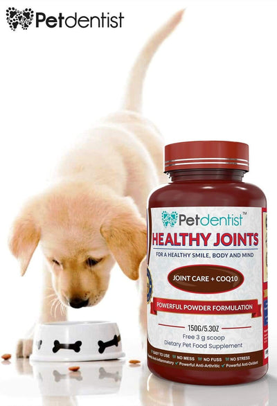 Jaw, Hip and Joint Care Supplement with CoQ10 Healthy Joints Powder – 150g - Pet Dentist