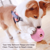 Dog Ball Treat Dispenser Rubber Chew Toy Plaque Cleaner – Pink - Petdentist