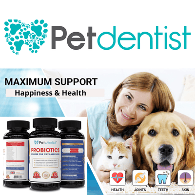 Probiotics Powder Supplement For Cats & Dogs- 90g - Petdentist