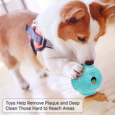 Dog Ball Treat Dispenser Rubber Chew Toy Plaque Cleaner  – Blue - Petdentist