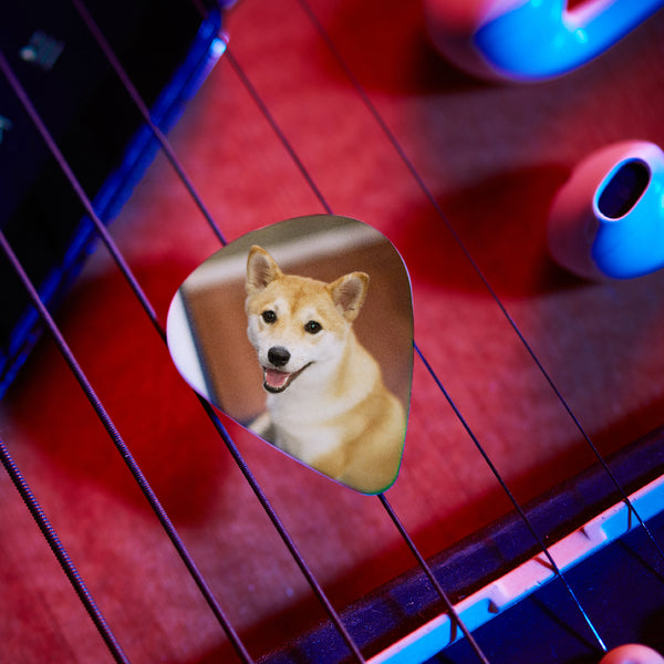 Personalized Guitar Pick With Photo For Pet -12Pcs