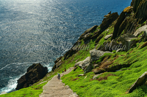 Skellig Michael's Stairway to Heaven