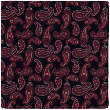 Load image into Gallery viewer, Pocket Square - Paisley Dark Blue/Red
