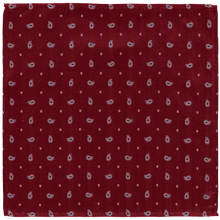 Load image into Gallery viewer, Pocket Square - Paisley Red Ribbed
