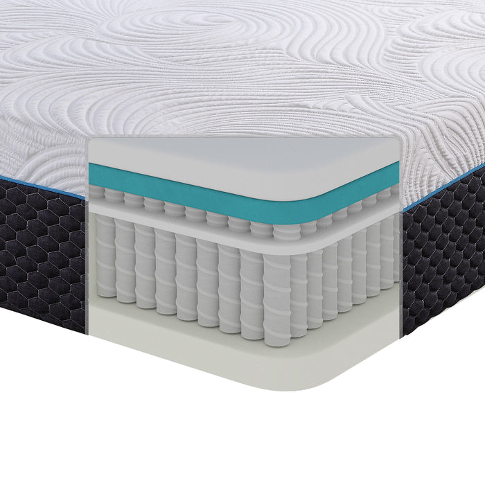Latex Microcoil Hybrid Mattress, 14-inch, Queen Size