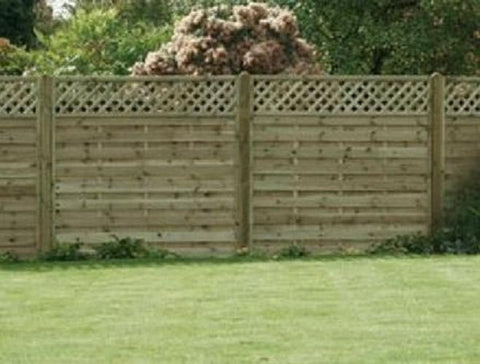 Trellis Top Panel Fencing