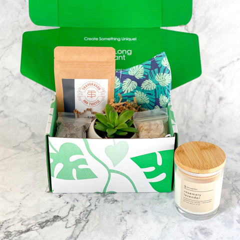 subscription box, plant gift, plant gifts, succulent gift, succulent gift box, plant gift box