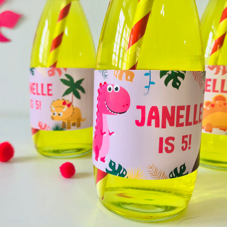 Girl Dinosaur Drinks Labels