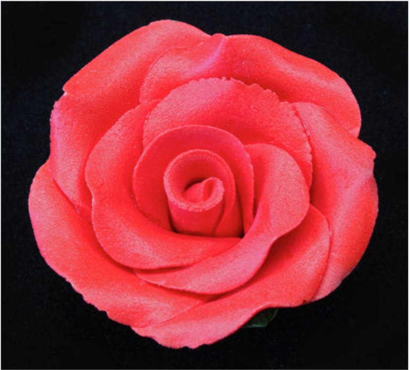 Large Rose  - Multiple Colours
