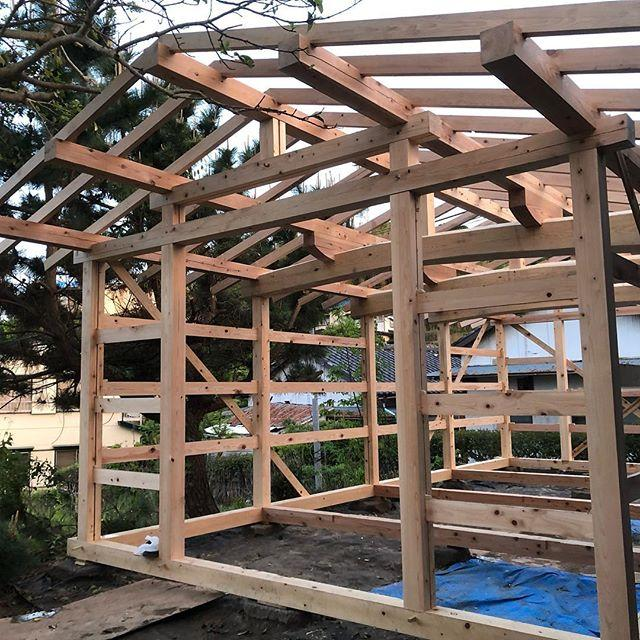 Build A Teahouse with Fujimoto Traditional Carpentry Company