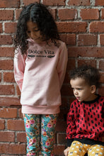Load image into Gallery viewer, Sweatshirt, Dolce Vita Pink